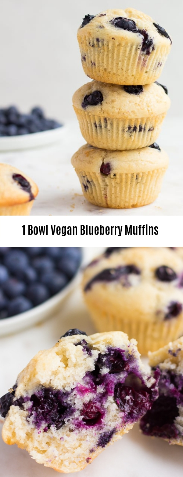 1 Bowl Vegan Blueberry Muffins