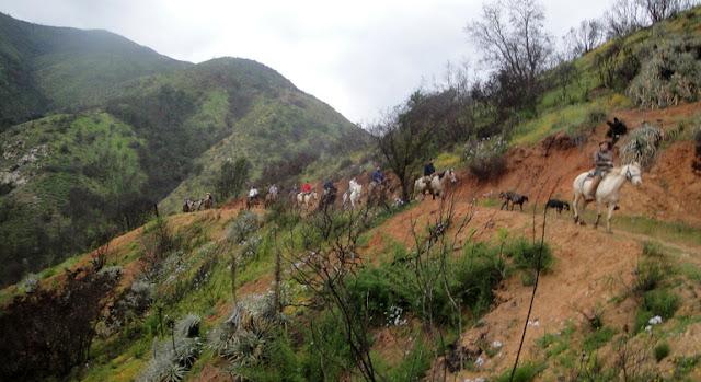 Passear a cavalo no verão em Valparaíso
