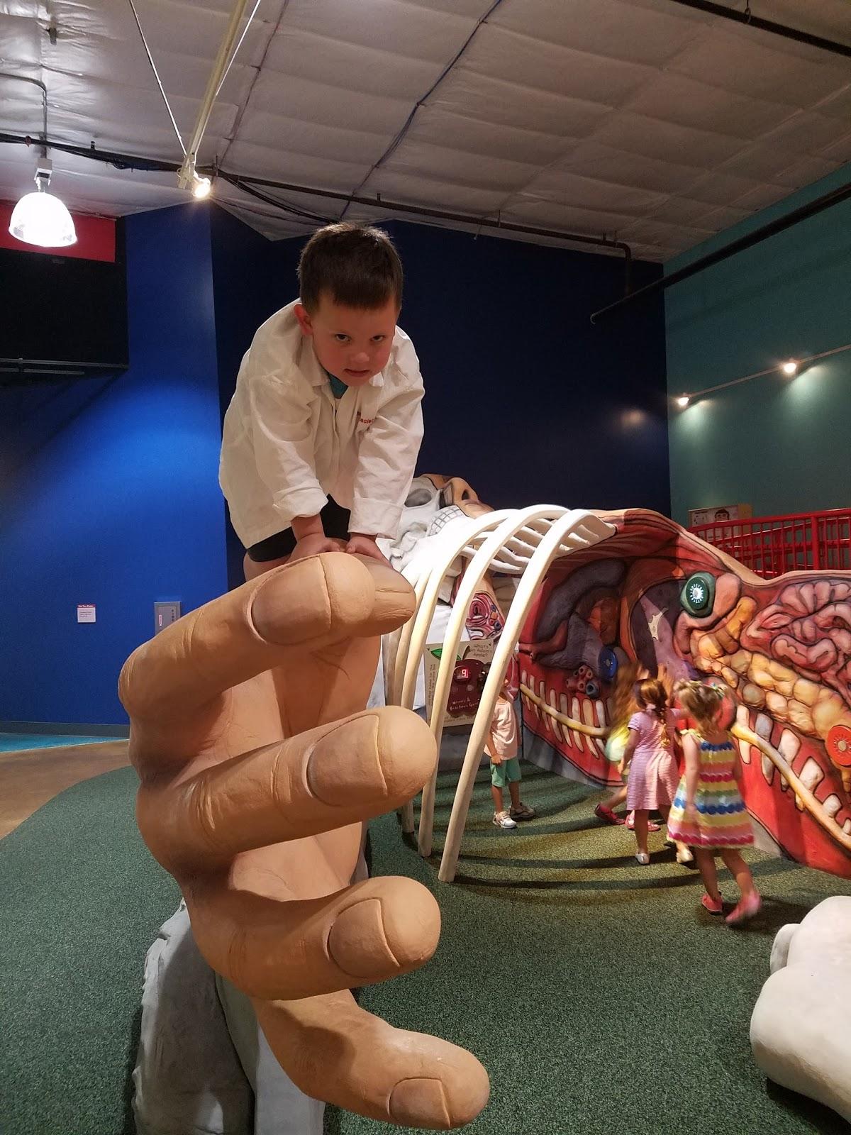 Play St Louis Healthworks Kids Museum St Louis City