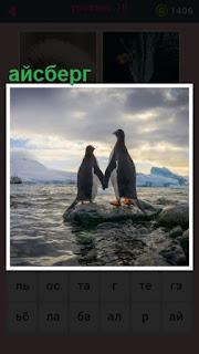 651 слов стоят два пингвина и айсберг в океане 10 уровень