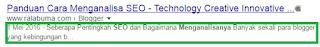 Contoh Hasil Penelusuran di Search Engine