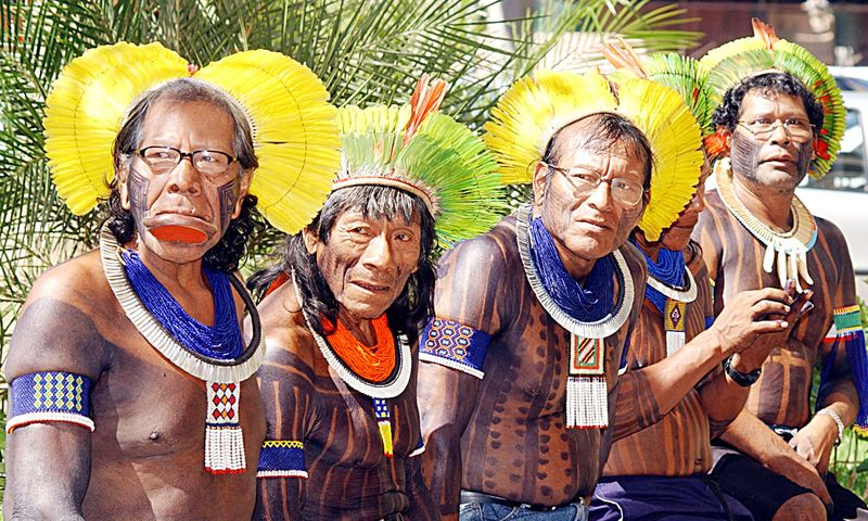 The history of the yonomamo indians of amazonia