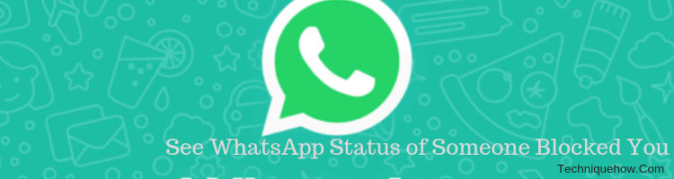 How to See WhatsApp Status of Someone who Blocked You