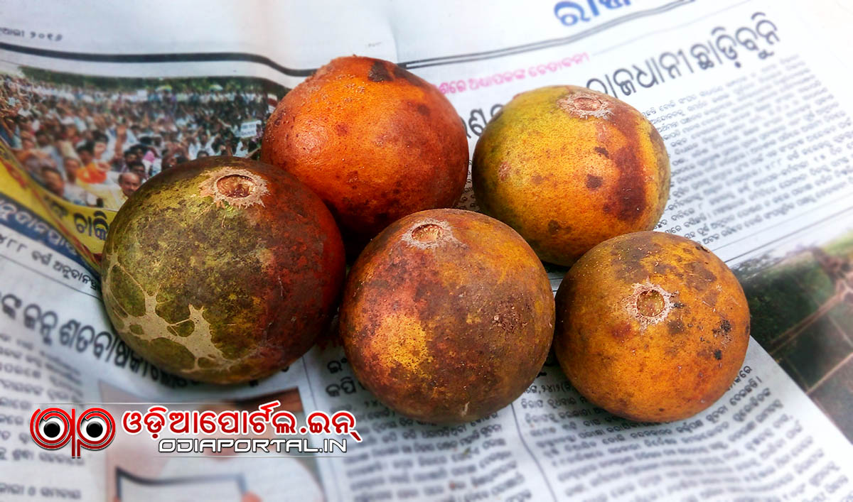 Recipe how to prepare bela pana read in we prepares bela pana on the occasion of odia new thecheapjerseys Choice Image