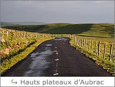 http://www.laurentbessol-photographies.fr/p/aubrac.html