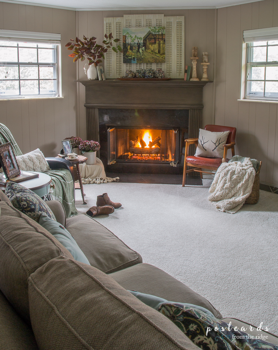 cozy carpeted living room