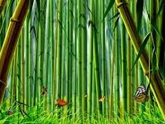 Mouse Deer and Tiger Story Funny Short Stories for Kids