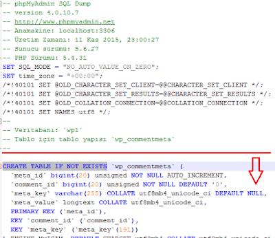 Windows'dan(Plesk) Linux(CPanel) Hosting'e Site Taşıma İşlemi