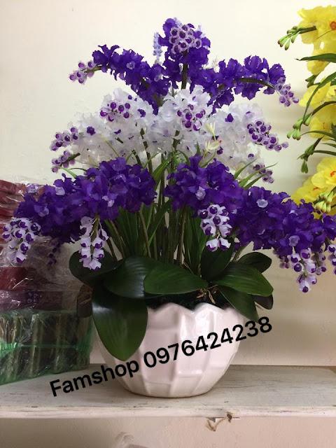 Hoa da pha le tai Cat Linh