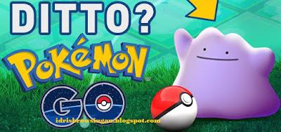 Cara Mendapatkan Pokemon Ditto Mudah