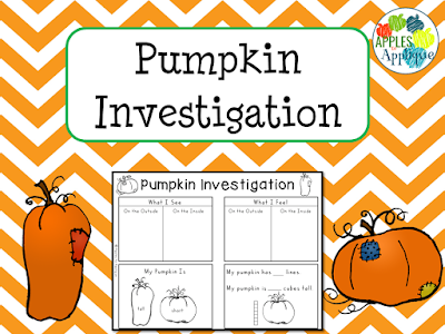 Pumpkin Investigation for Early Childhood | Apples to Applique