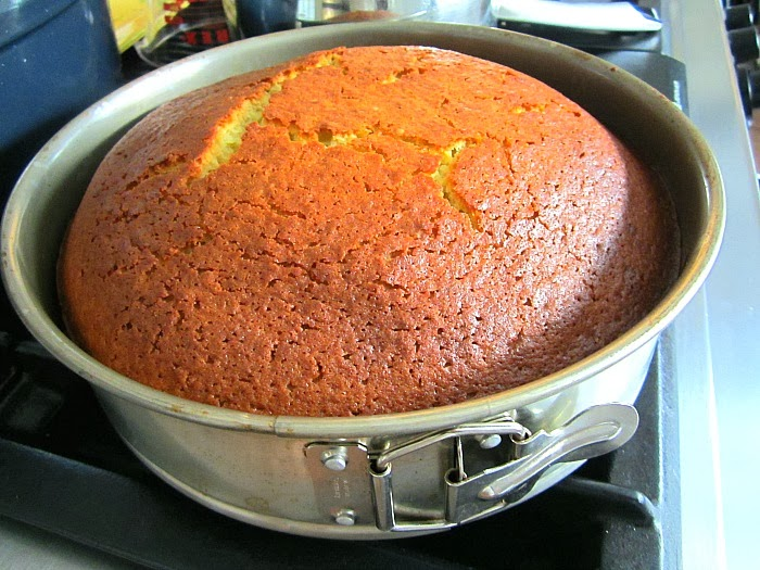 Disappointment: My Love Affair w/ Olive Oil Cake