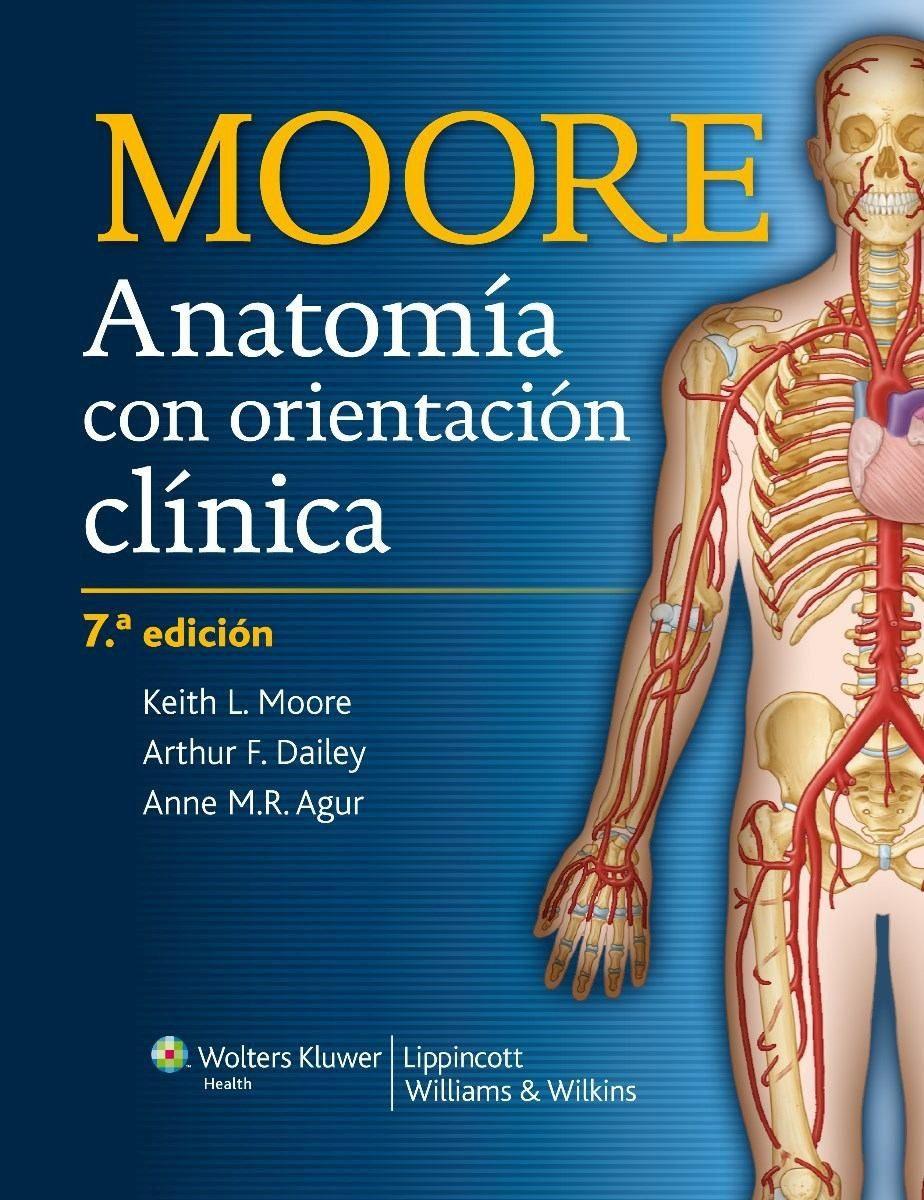 anatomia con orientacion clinica moore 8 edicion pdf descargar gratis