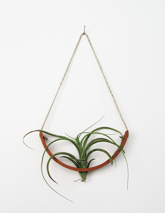 Hanging Air Plant Cradle by mudpuppy