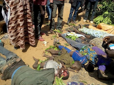 "UN has confirmed that it is probing ""recent allegations of killings of over 800 citizens mostly women, children and the elderly in Southern Kaduna by…"