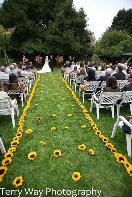 Holly Farm Wedding Carmel Photographer Terry Way Photography