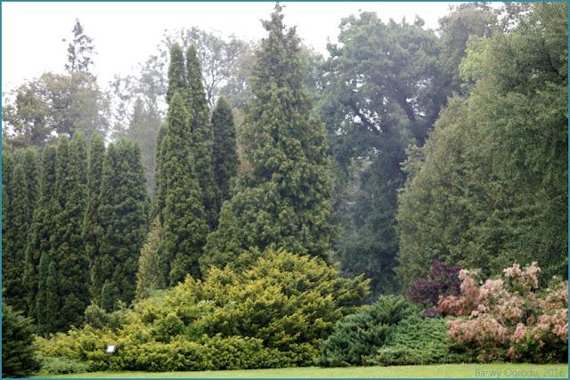 Krasiczyn ogród