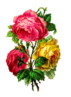flower rose image clip art digital download