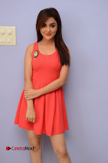 Actress Ragini Nandwani Pictures at Siddhartha Movie Teaser Launch  0049.JPG