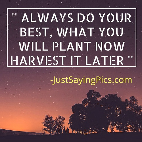 best-motivational-quotes-thoughts-Always-do-your best-what-will-you-plant-now- you-will-harvest- later