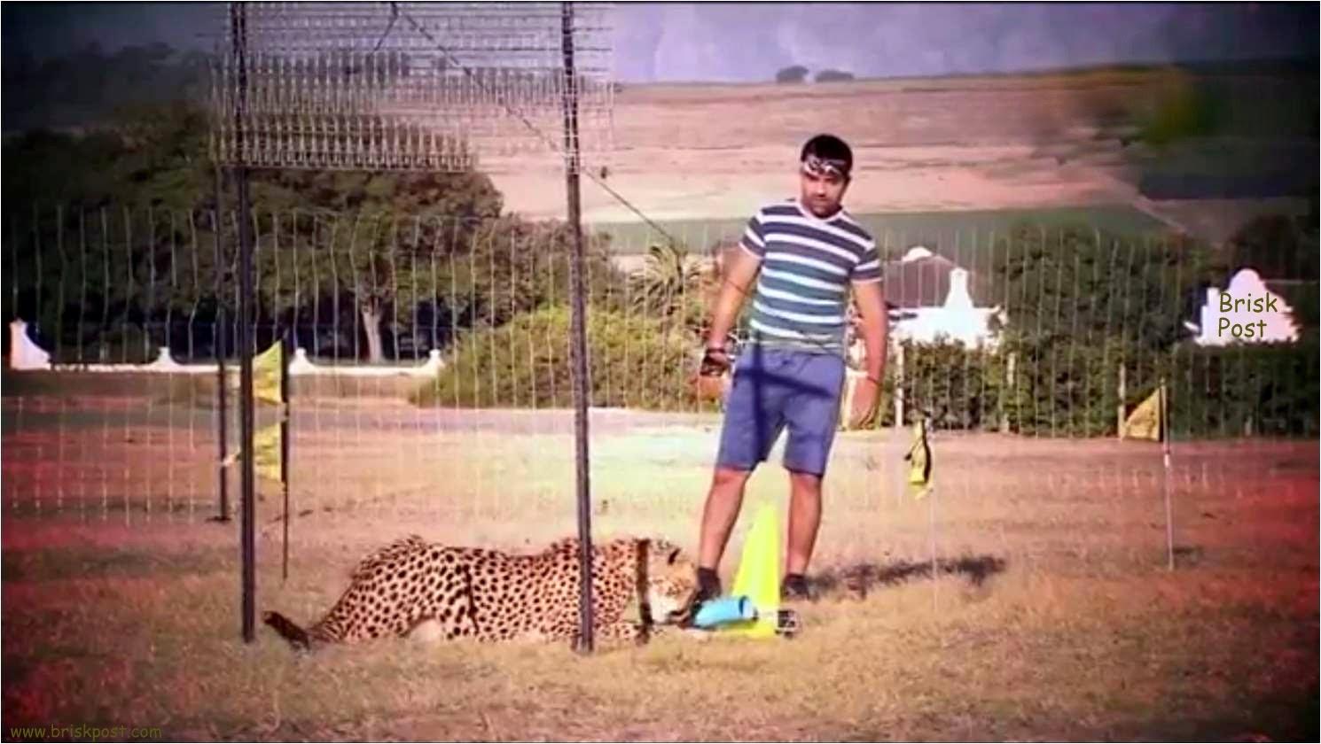Fear Factor contestant Ajaz Khan near tiger after Aamna Saamna stunt in Khatron Ke Khiladi