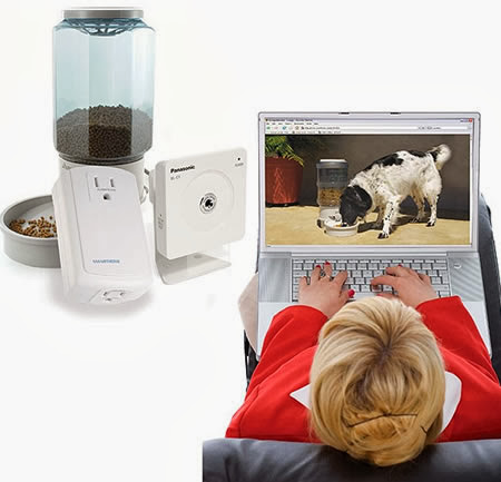 Coolest Dog Products and Gadgets (15) 14