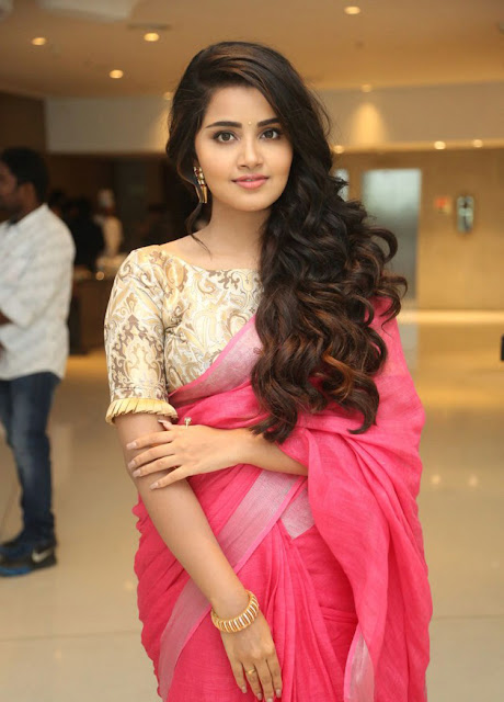 Anupama-Parameswaran Photos