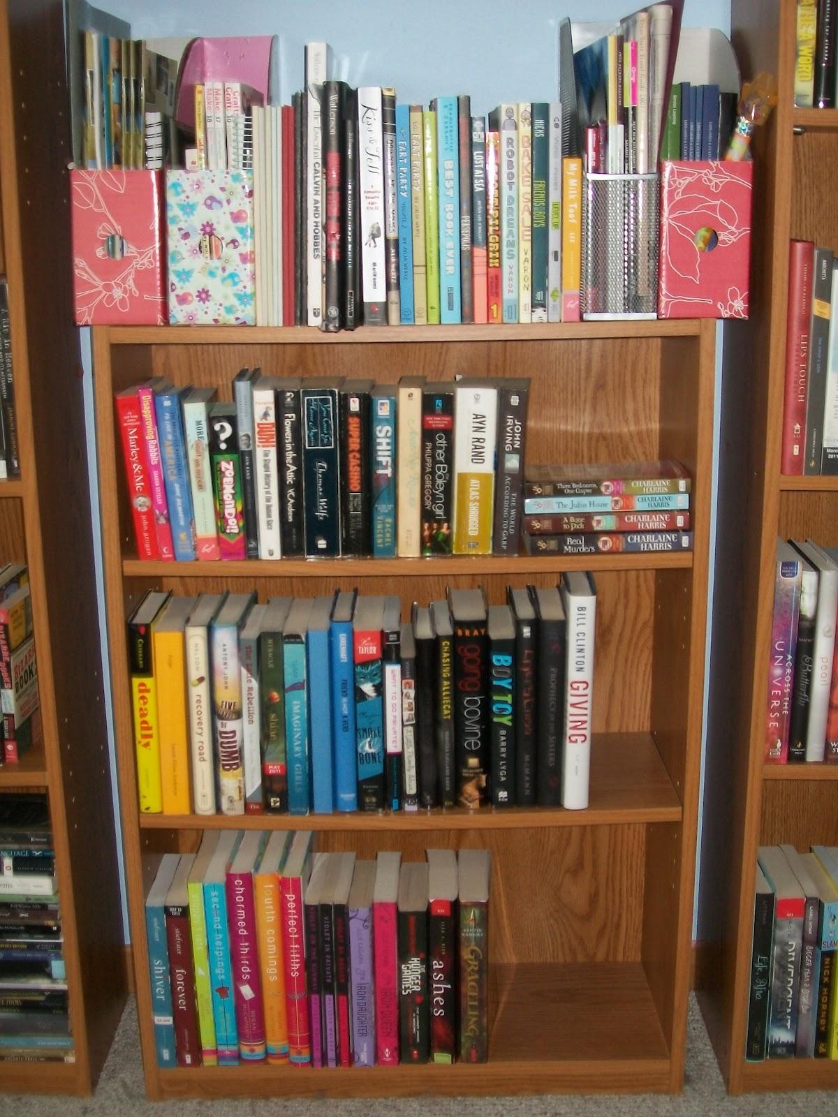 shelf existence guides review