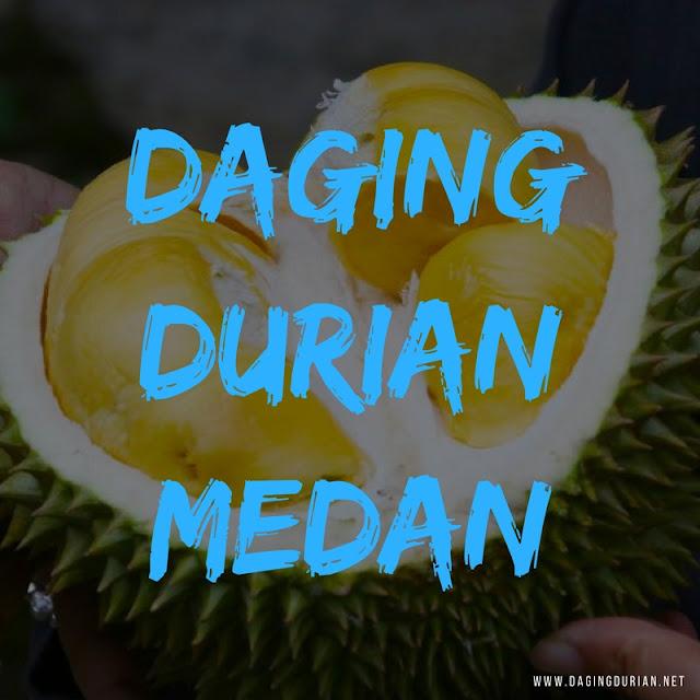 produsen-daging-durian-medan-maidanii-di-blitar