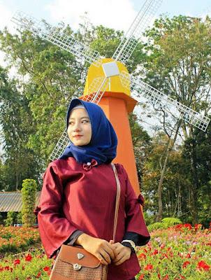 spot kincir angin di taman bunga celosia