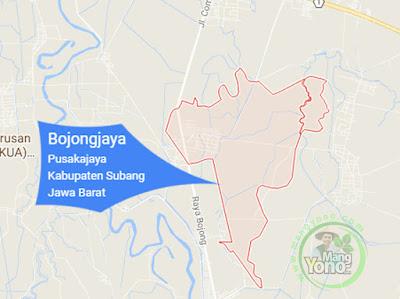 PETA : Desa Bojongjaya, Kecamatan Pusakanagara