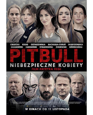 """""""Pitbull. Niebezpieczne kobiety"""" - recenzja filmu"""