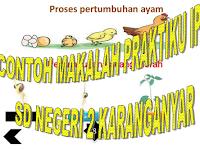 MAKALAH PRAKTIKUM IPA SD