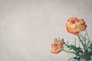 Puisi Cinta Ruang Hampa Karya Dinda Fatimatuz Zahra