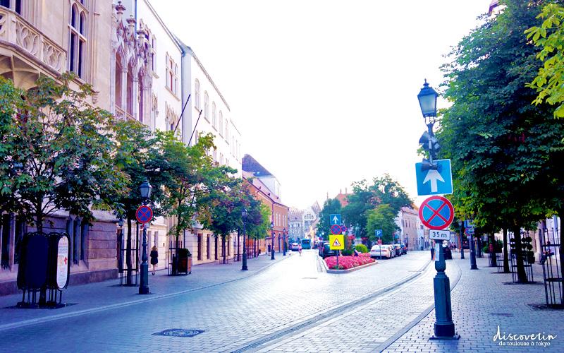 Ruelle à Budapest
