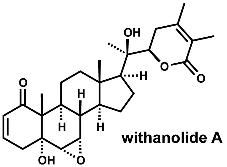 modern steroid science: Withanolide A, a Lead Compound for