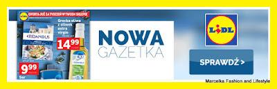 https://lidl.okazjum.pl/gazetka/gazetka-promocyjna-lidl-11-04-2016,19573/1/