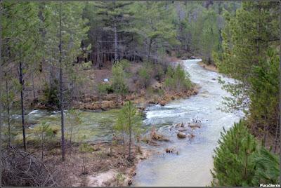Desembocadura del Arroyo De La Dehesa en el Río Escabas (Poyatos)