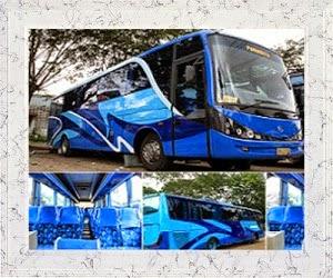 Sewa Bus Tangerang Puncak, Sewa Bus Tangerang, Sewa Bus Ke Puncak