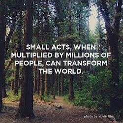 Small Acts...