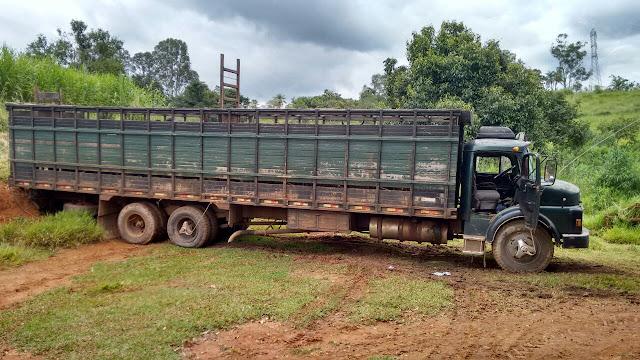 Quadrilha de roubo a gado é desmantelada pela Guarda Civil de Mogi Guaçu e Polícia Civil