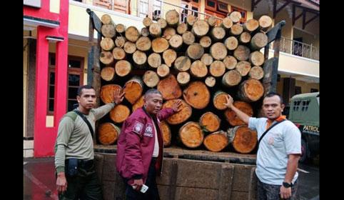 Waka ADM Muhlisin saat menunjukkan BB truck bermuatan kayu yang diamankan