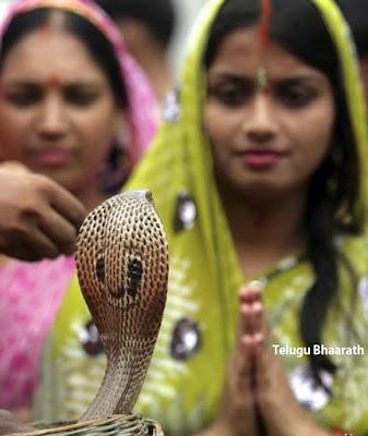 నాగుల చవితి - Nagula Chaviti