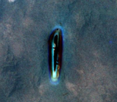 nasa alien 20 year later - photo #32