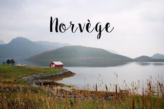 http://moijeperegrine.blogspot.fr/2014/09/norvege-la-video.html