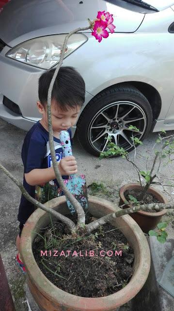 Hobi Baru Dengan Anak-Anak