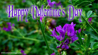 happy valentines day day images