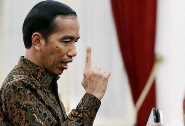 Sentilan Nylekit Pak Jokowi, Bapak Saya Jual Kayu dan Pernah Jadi Sopir, Tapi Sikap Optimis Pasti
