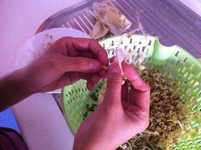 Come fare di soia fatto in casa