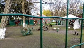 Миргород. Парк. Птичник